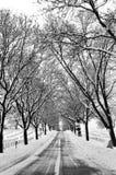 VA Cemetery Royalty Free Stock Photos
