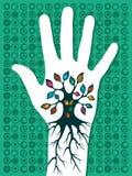 Va el árbol verde de la mano Fotos de archivo libres de regalías