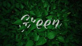 va el verde fotos de archivo libres de regalías