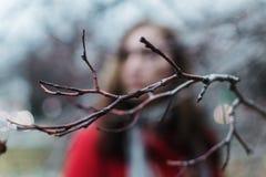 Vaag portret van een vrouw achter de boomtak tijdens blauw uur stock fotografie