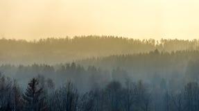 Vaag stijgen van de mist van de Harz-bergen in de vroege ochtend, opzettelijk stock fotografie