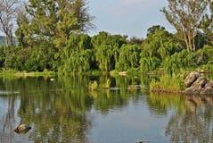 Vaal rzeka Południowa Afryka Fotografia Stock