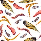 Vaariety συλλογή φτερών, άσπρο υπόβαθρο απεικόνιση αποθεμάτων