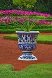Vaas met bloem als element van landschapsontwerp Stock Afbeeldingen