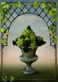 Vaas met druiven en wijnstokkenframe vector illustratie