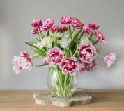 Vaas met dubbele Nederlandse tulpen Stock Afbeelding