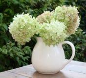 Vaas met een boeket van verse Hortensia-bloemen van de tuin Royalty-vrije Stock Afbeeldingen