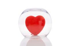 Vaas met het Hart van de Liefde Stock Fotografie