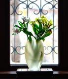 Vaas met irisbloemen voor venster Royalty-vrije Stock Afbeelding