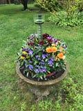 Vaas met kleurrijke bloemen in de tuin stock afbeelding