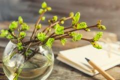 Vaas met takken met jonge spruiten van groen en vaag notitieboekje op de rustieke houten lijst De lente awaking concept wijnoogst stock afbeeldingen