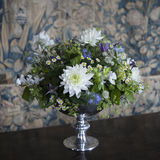 Vaas met witte chrysant Stock Foto