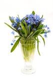 Vaas van bloemen Stock Fotografie