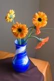 Vaas van Bloemen Royalty-vrije Stock Afbeeldingen