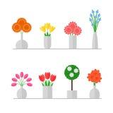 Vaas van bloemen Royalty-vrije Stock Fotografie