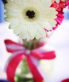 Vaas van roze en witte bloemen royalty-vrije stock foto