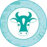 Vaca. Foto de archivo libre de regalías