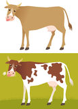Vaca Imagenes de archivo