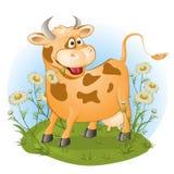 A vaca amusing mastiga uma grama. Imagens de Stock