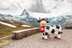 Vaca cerca del Cervino, Suiza Foto de archivo
