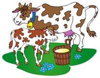 Vaca con el becerro Fotografía de archivo
