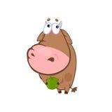 Vaca con la manzana Imagen de archivo
