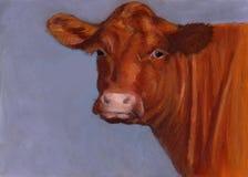 Vaca de carne vermelha de Hereford, pintura pastel do óleo Fotografia de Stock Royalty Free