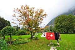 Vaca de madeira com a bandeira suíça vermelha em Interlaken Imagem de Stock Royalty Free