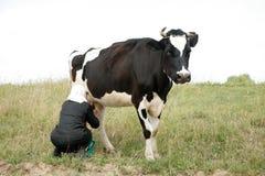 Vaca de ordeño de la mujer Fotografía de archivo libre de regalías