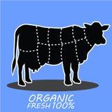 Vaca dibujada mano del animal del campo Letras frescas orgánicas de la leche Fotos de archivo