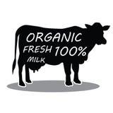 Vaca dibujada mano del animal del campo Letras frescas orgánicas de la leche Ilustración del vector Imagenes de archivo