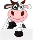 Vaca divertida con la muestra en blanco Imagenes de archivo
