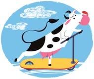 Vaca do divertimento que monta um 'trotinette' Fotografia de Stock Royalty Free