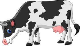 Vaca dos desenhos animados isolada no fundo branco Fotos de Stock Royalty Free