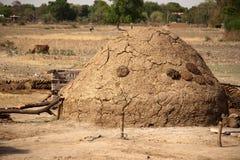 A vaca dung- o melhor fertilizante natural Imagens de Stock