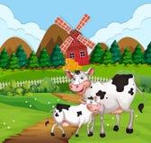 Vaca en escena de las tierras de labrant?o ilustración del vector