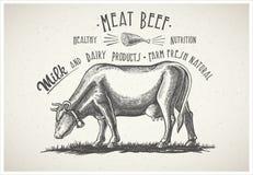 Vaca en estilo gráfico Foto de archivo libre de regalías