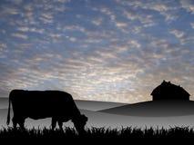 Vaca en pasto libre illustration