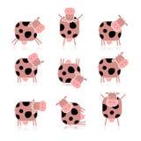 Vaca engraçada, coleção para seu projeto Fotos de Stock Royalty Free