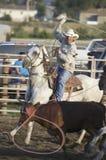 Vaca lassoing do cowboy no rodeio de PRCA imagem de stock royalty free