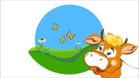 Vaca lechera de la granja almacen de metraje de vídeo