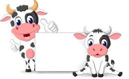 Vaca linda Fotos de archivo libres de regalías