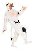 Vaca louca Imagens de Stock Royalty Free
