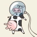 Vaca no espaço Foto de Stock