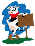Vaca ocidental engraçada Imagem de Stock