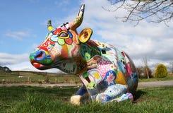 Vaca pintada Fotos de archivo libres de regalías