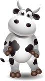Vaca preto e branco bonito Imagem de Stock Royalty Free