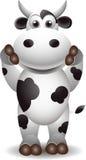 Vaca preto e branco bonito Imagens de Stock
