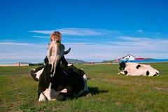 Vaca que elimina moscas Imagenes de archivo