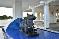 Vaca santa Posts de Flacq, Mauricio imagenes de archivo